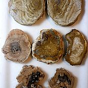 Материалы для творчества handmade. Livemaster - original item Fossilized tree replaced by silica(opal,chalcedony)Madagascar. Handmade.
