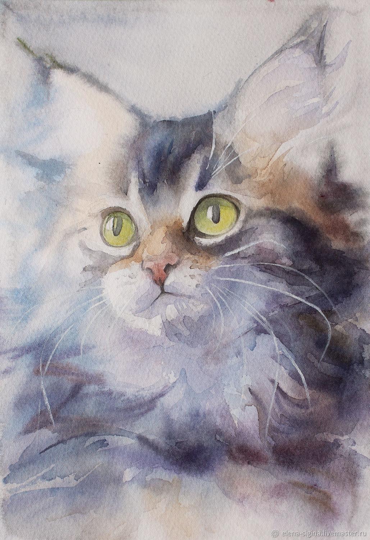 Картина акварелью пушистый кот, Картины, Москва,  Фото №1