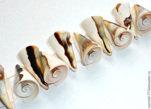 Разделитель на 2 нити из натуральных морских раковин  размер 28-32х13-15 мм Подойдёт для изготовления колье и браслетов.