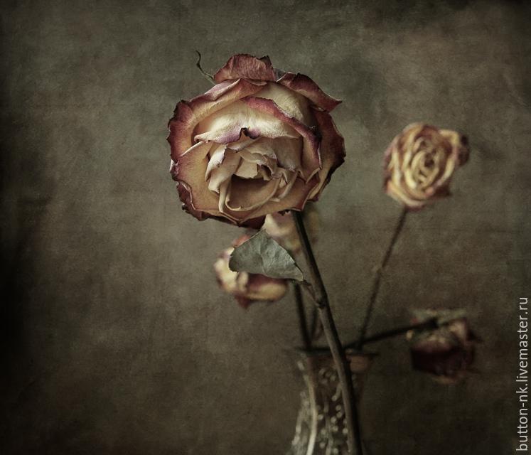 Чтобы срисовать, сухие розы в открытках