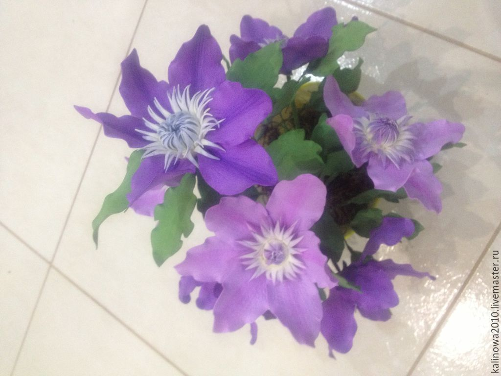 clematis from Tamarana, Composition, Abinsk,  Фото №1