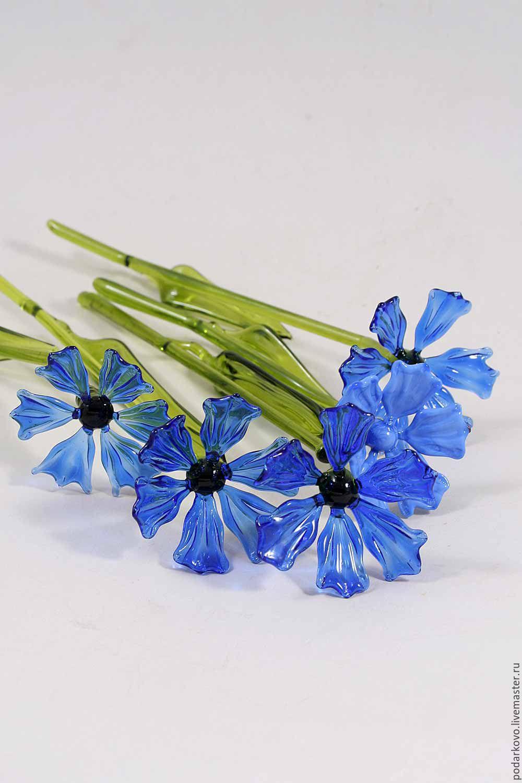 Васильки цветы купить киев