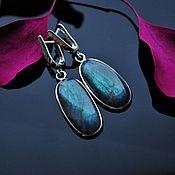 Украшения handmade. Livemaster - original item Large, long silver earrings with Labrador pendants. Handmade.