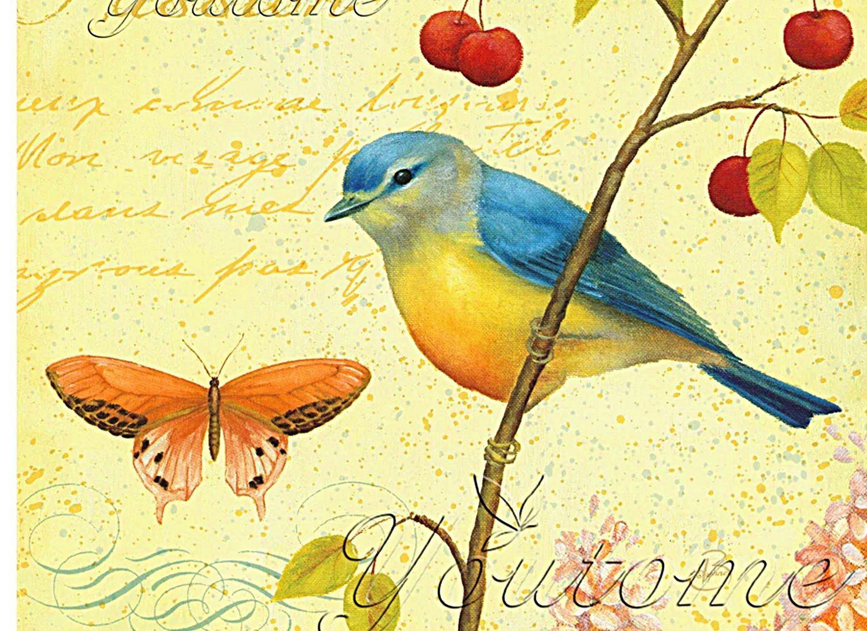 Открытки для девочек птицы, дети картинки