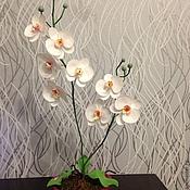 Цветы и флористика ручной работы. Ярмарка Мастеров - ручная работа Орхидея из фоамирана. Handmade.