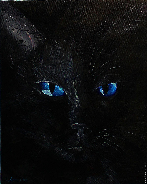 картинки с черными кошками с голубыми торт