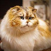 Куклы и игрушки handmade. Livemaster - original item Tri-color Persian cat . Realistic toy. Handmade.
