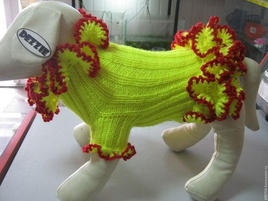 """Одежда для собак, ручной работы. Ярмарка Мастеров - ручная работа. Купить Платье """"Ламбада"""". Handmade. Лимонный, пряжа акрил"""