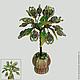Миниатюрное дерево счастья из лабрадора в вазочке из оникса