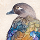 Каролинская утка. Серия Утки, акварель, размер 18см*26см, Светлана Маркина, LechuzaS