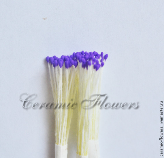 Stamens small purple, Stamens, Rostov-on-Don,  Фото №1