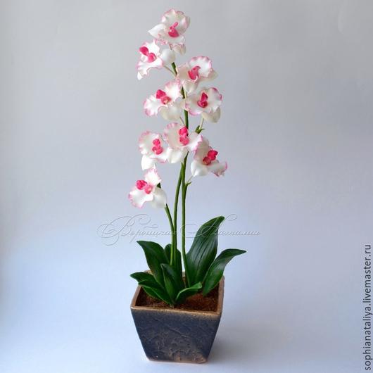 Цветы ручной работы. Ярмарка Мастеров - ручная работа. Купить Орхидея из холодного фарфора. Handmade. Белые орхидеи, купить подарок
