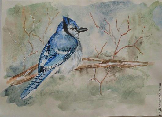 Животные ручной работы. Ярмарка Мастеров - ручная работа. Купить Голубая сойка#1. Handmade. Комбинированный, сойка, акварель, птица