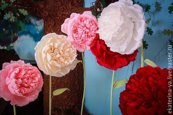 Ростовые цветы, Цветы, Орел, Фото №1