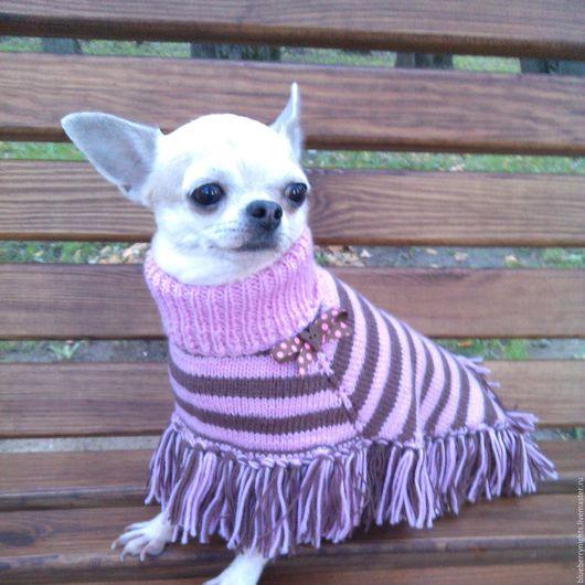 """Одежда для собак, ручной работы. Ярмарка Мастеров - ручная работа. Купить Пончо """"Глория"""". Handmade. Розовый, пончо спицами"""
