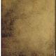 """Обложки ручной работы. обложка  """"Паспорт Гениального человека"""" (кожа). Анастасия (sollisy). Ярмарка Мастеров. Обложка на паспорт, стильный аксессуар"""