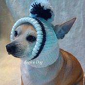 Для домашних животных, ручной работы. Ярмарка Мастеров - ручная работа Шапки для собак ( чихуа ). Handmade.