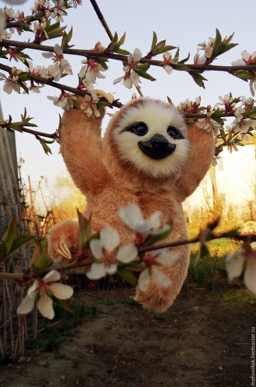 Игрушка ленивец своими руками фото 970