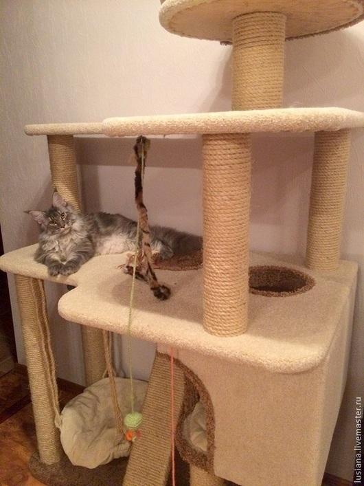 """Одежда для кошек, ручной работы. Ярмарка Мастеров - ручная работа. Купить """"Аттракцион"""" для крупных кошек. Handmade. Домик для кошки"""