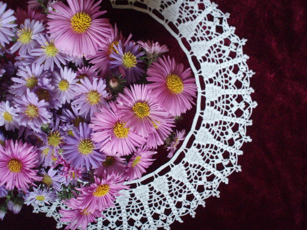 Lace collar No. №11, Collars, Bataysk,  Фото №1
