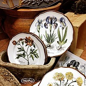 Посуда handmade. Livemaster - original item Painted porcelain Collection of plates on the wall of Botanical prints. Handmade.