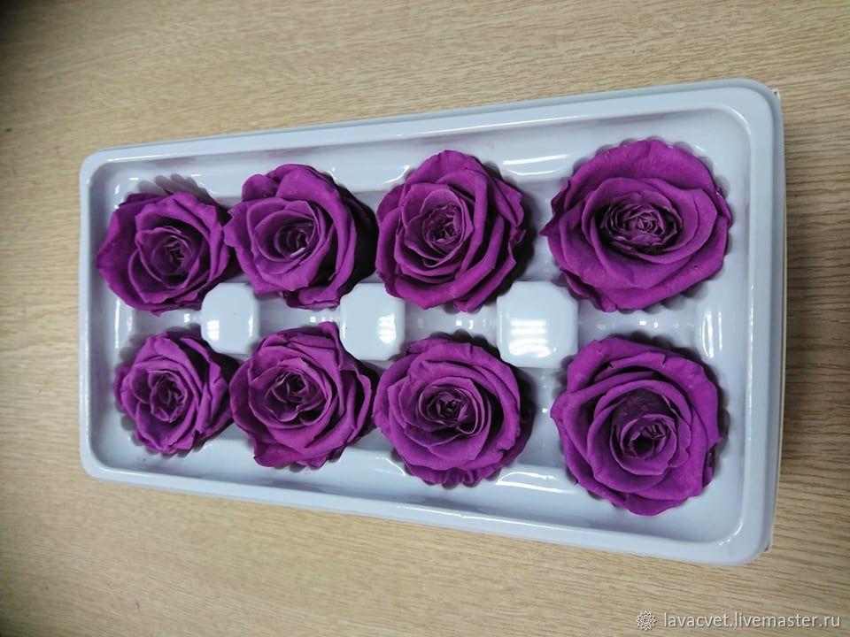 Розы стабилизированные, головки, Цветы, Москва,  Фото №1